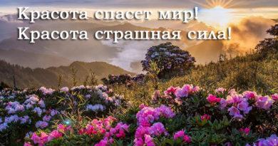 Красота спасет мир! Красота страшная сила!