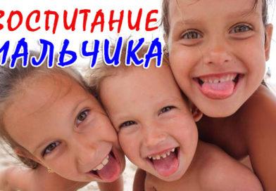 Воспитание мальчика - Ирина Лемешаева