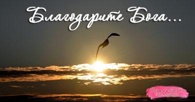 Благодарить Бога... - Ирина Лемешаева