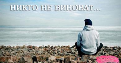 Никто НЕ ВИНОВАТ... - Ирина Лемешаева
