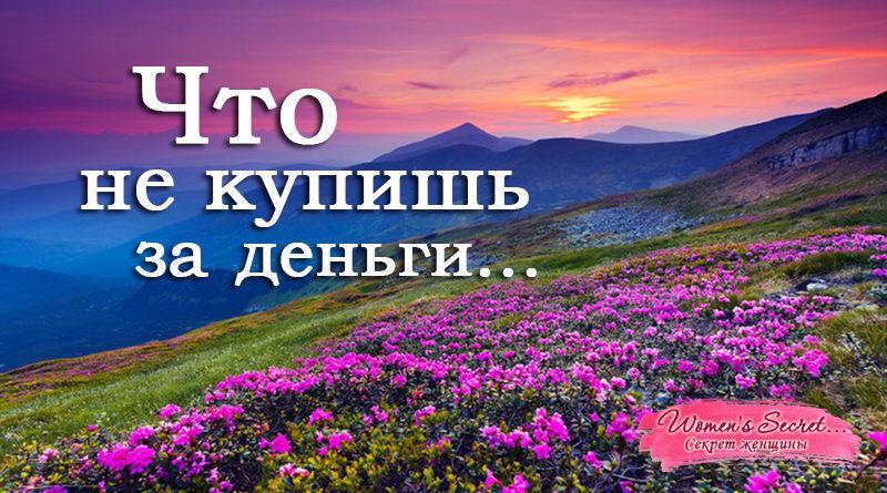 Что не купишь за деньги... - Ирина Лемешаева