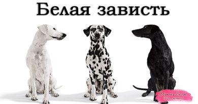 """Зависть. Часть-2 """"Белая зависть"""" - Ирина Лемешаева"""